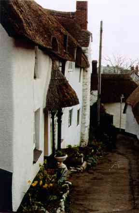 Cob Village, Minehead, Somerset
