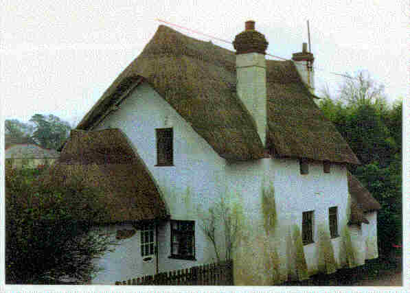 Another Devon, England Cob House, reed thatch roof